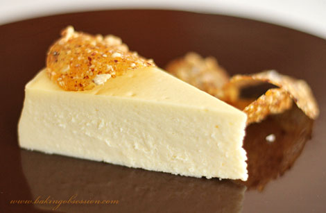 White Chocolate and Brie Cheesecake with Fleur de Sel and Hazelnut Brittle Slice