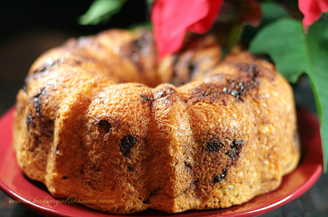 Chocolate and Cherry Babka