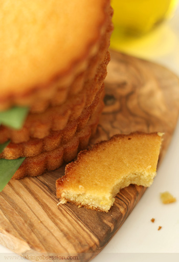 Capezzana Olive Oil and Orange Cakes